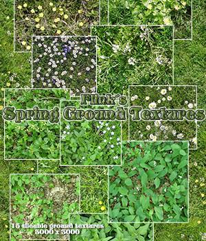 Flinks Spring Ground Textures 3D Models 2D Graphics Flink