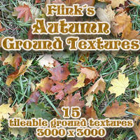 Flinks Autumn Ground Textures Themed 2D And/Or Merchant Resources Flink