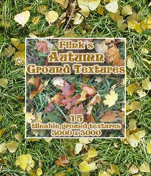 Flinks Autumn Ground Textures 3D Models 2D Graphics Flink