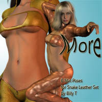 More for V4 Snake Leather Set by billy t  zachary