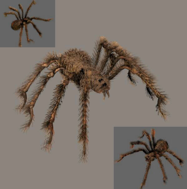 Posable Hairy Spider
