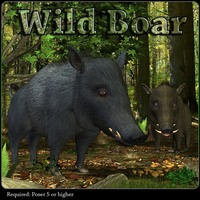 Wild Boar Animals wolmol