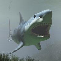 MegalodonDR Stand Alone Figures Animals Dinoraul