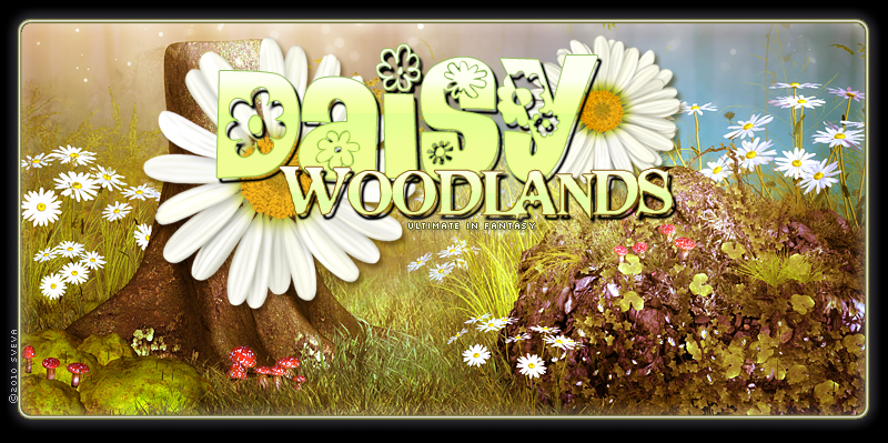 Daisy Woodlands Backgrounds