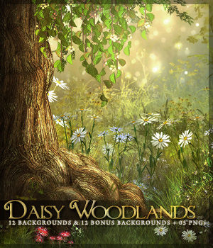 Daisy Woodlands Backgrounds 2D Graphics Sveva