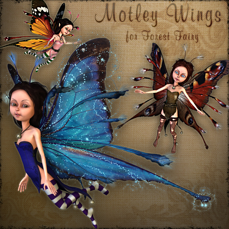 Motley Wings