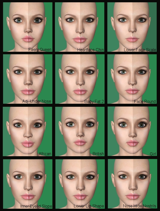 V4 face Morph kit 2