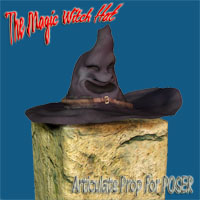 The Magic Witch Hat 3D Figure Assets 3D Models zachary