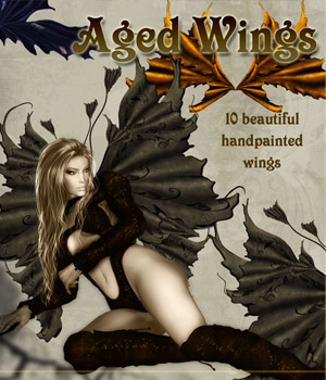 Aged Wings 2D Graphics antje