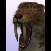 SaberTooth Reloaded by AM image 1