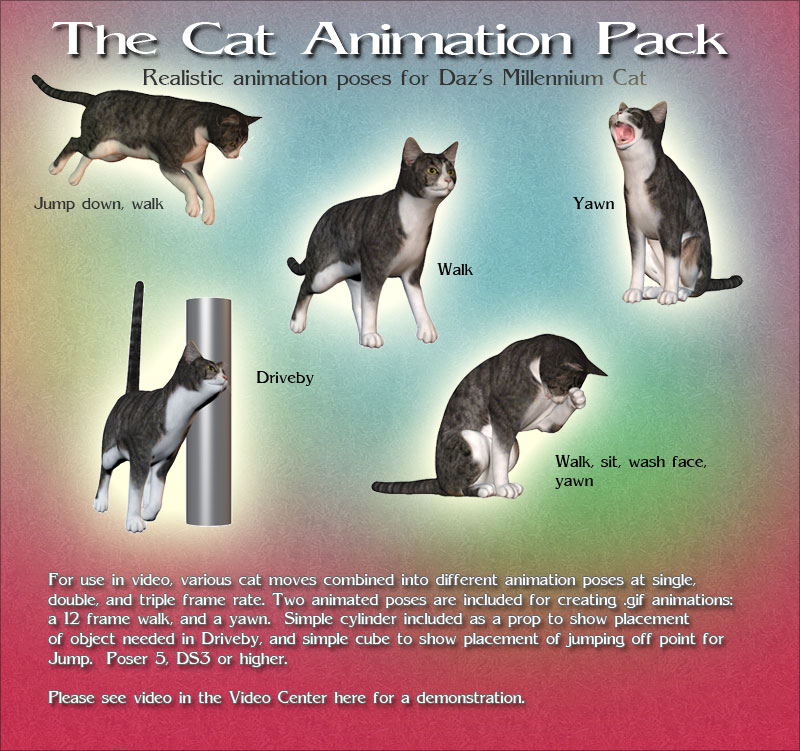 The Cat Animation Pack