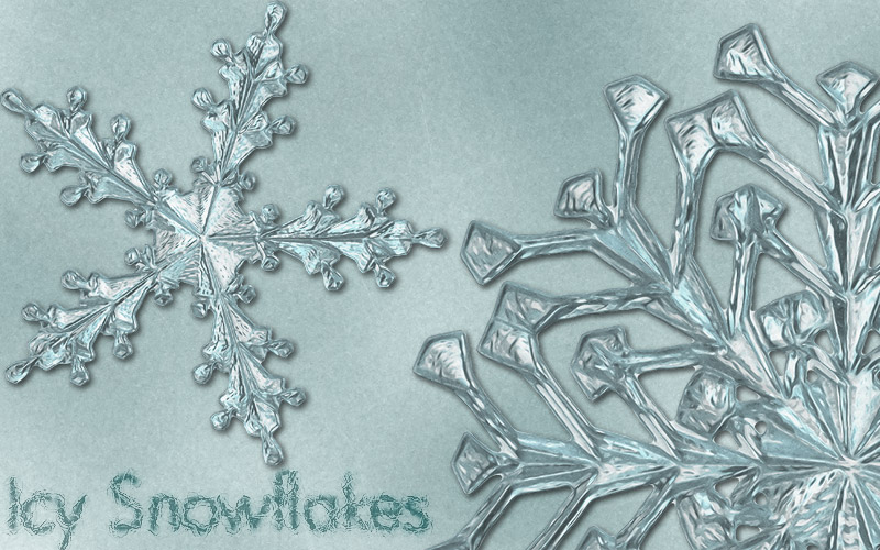 icy snowflake 3 or - photo #1