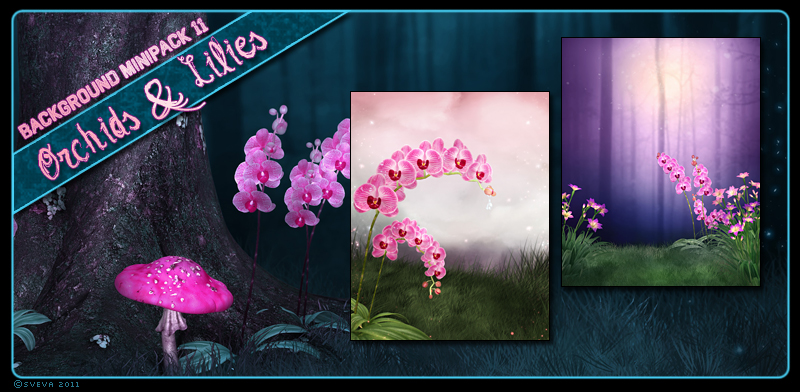 Background Mini-Pack 11: Orchids & Lilies