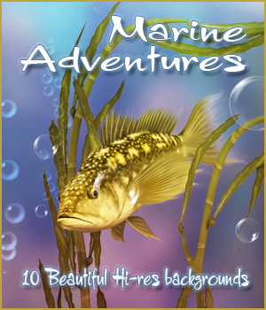 Marine Adventures by Bez