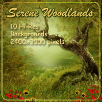Serene Woodlands Backgrounds Themed 2D And/Or Merchant Resources AdamantGrafix