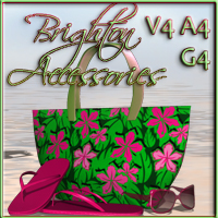 Brighton Beach Accessories - V4 A4 G4 Accessories nikisatez