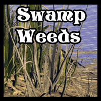 Weeds Twigs n Stuff for Tansys Swamp 3D Models Ravyns