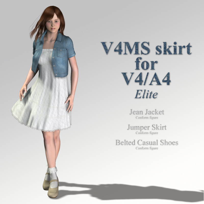 V4MS skirt for V4A4