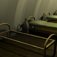 Military Quonset Barrack image 6