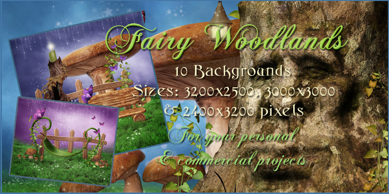 Fairy Woodlands