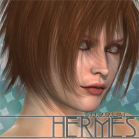Surreal Hermes Hair surreality