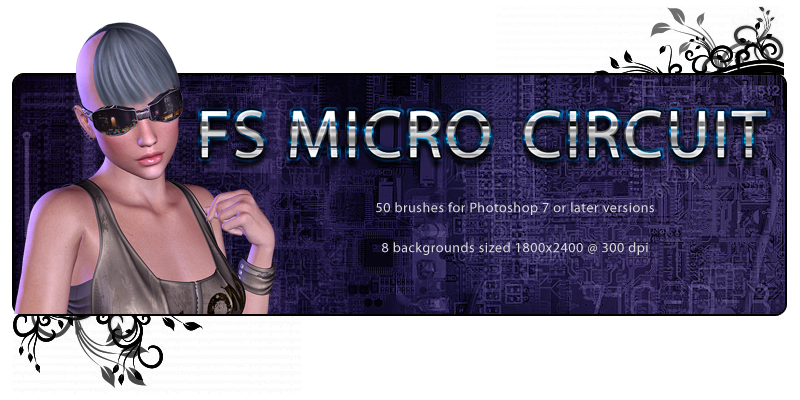 FS MicroCircuit