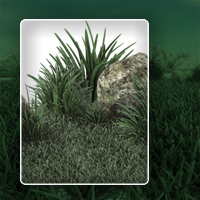 Realistic grass image 2