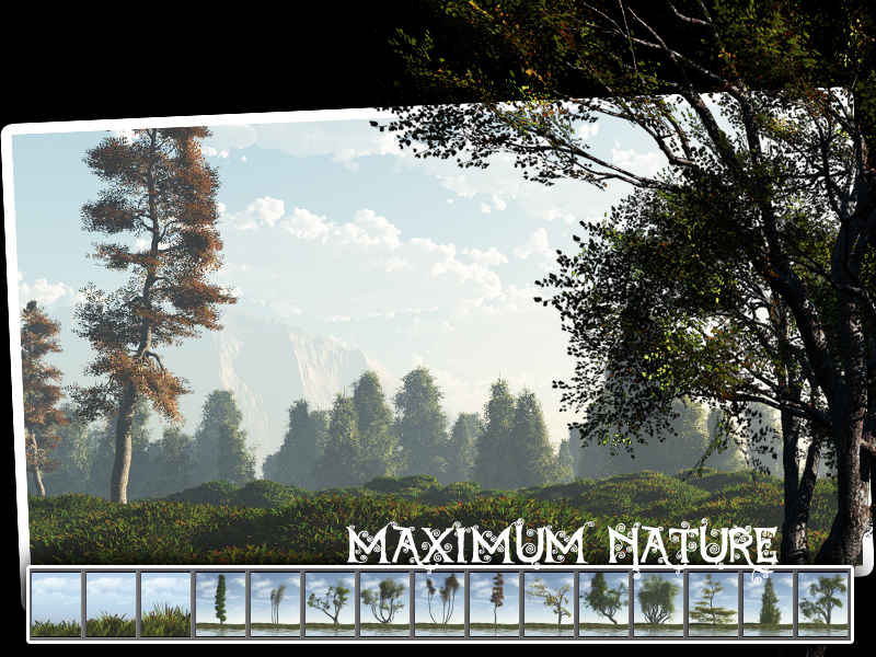 Maximum Nature
