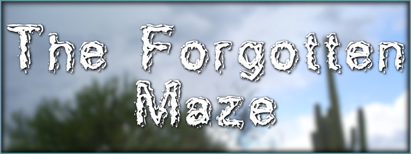 The Forgotten Maze