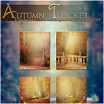 Autumn Thicket image 1