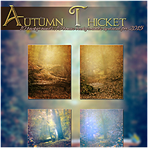 Autumn Thicket image 3