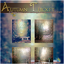Autumn Thicket image 4