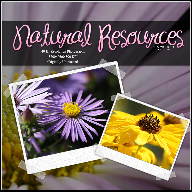 Natural Resources: Flowers