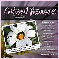Natural Resources: Flowers image 1