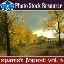 Spanish Forest Vol 3 Themed 2D And/Or Merchant Resources Stock Photography EmmaAndJordi