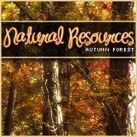 Natural Resources: Autumn Forest 2D And/Or Merchant Resources Themed Sveva