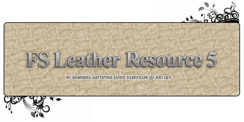 FS Leather Resource 5