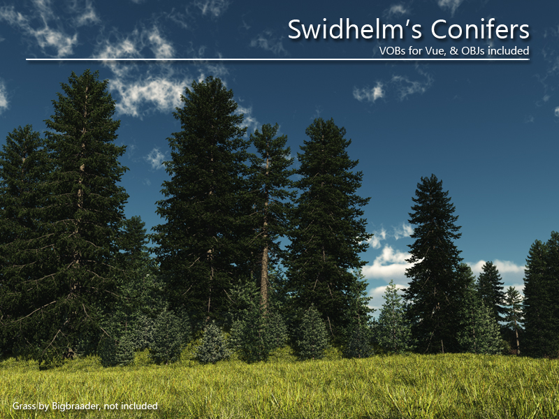Swidhelm's Conifers