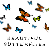 Beautiful Butterflies 3D Models RetroDevil