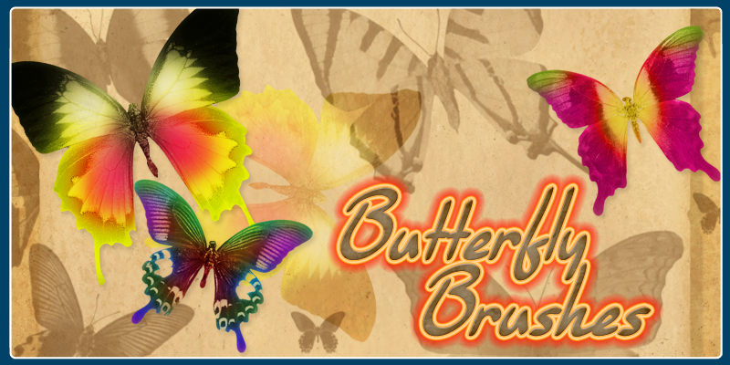 Brushes - Butterfly
