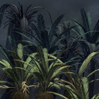 Cycads2012 DR 3D Models Dinoraul