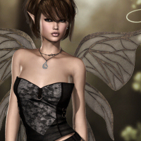 Wings and Things Vol.1 image 3