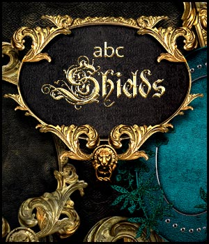 ABC Shields by Bez