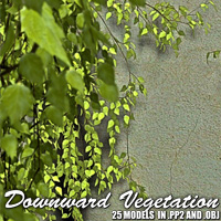 Downward Vegetation 3D Models designfera