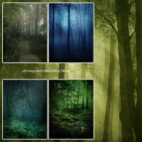 FS Best of Forest Backgrounds image 2