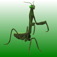 Mantis (for Poser) 3D Models Digimation_ModelBank