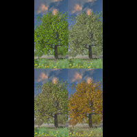 Flinks Tree 4 -seasons- image 8