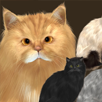 Fluffy Cat 3D Models Tiny