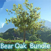 Bear Oak Bundle 3D Models martinjfrost