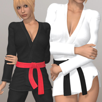 Karate Outfit 3D Figure Essentials 3D-Age